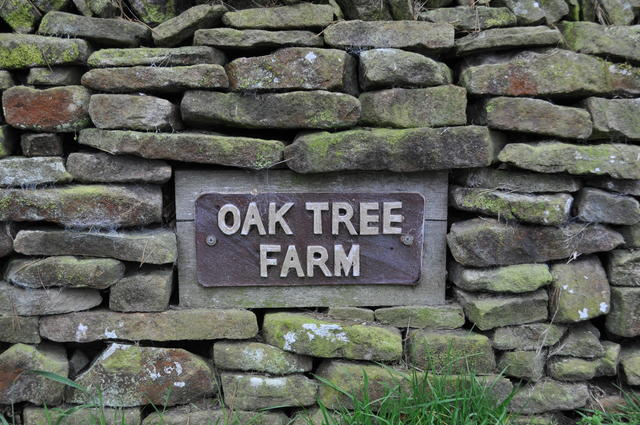Oak Tree Farm