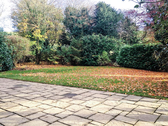 View of the front garden, a great place for a game of hide and seek!