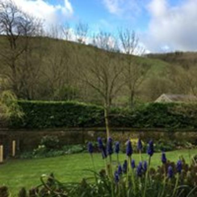Pretty views can be enjoyed from the property