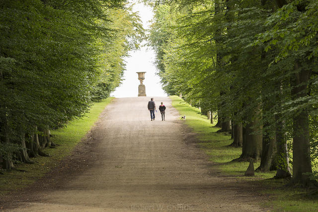 Long picturesque driveways in Derbyshire gives a fun activity to visit