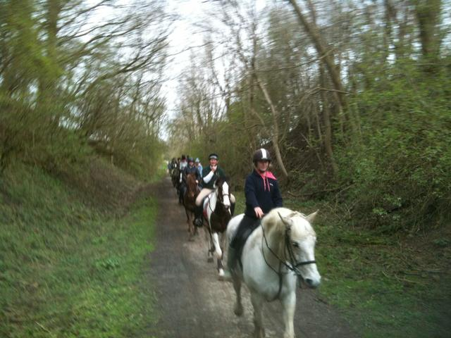 Peak District Outdoor Pursuit - Horse Riding