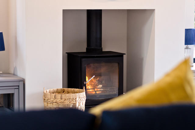 Contemporary Log Burner