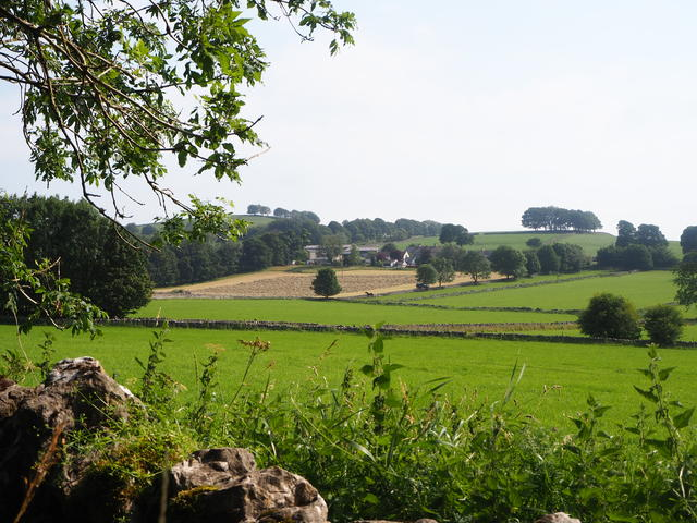 Views across the fields to The Ditch, Chelmorton