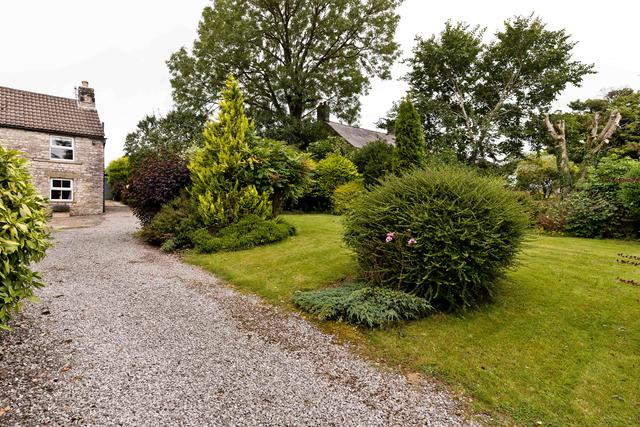 Front garden and driveway